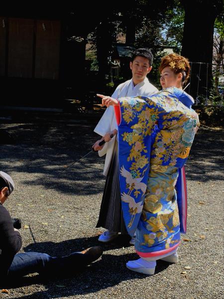 茨城県水戸市 水戸の桜まつり 「常盤神社」_d0106628_08423482.jpg