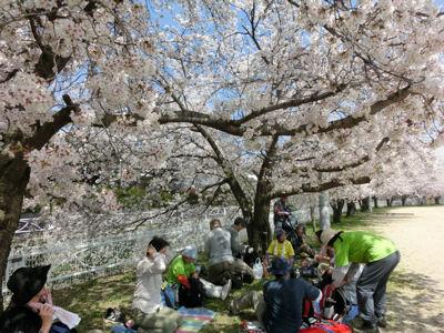 山梨市の桃は満開♪_f0019247_21591475.jpg