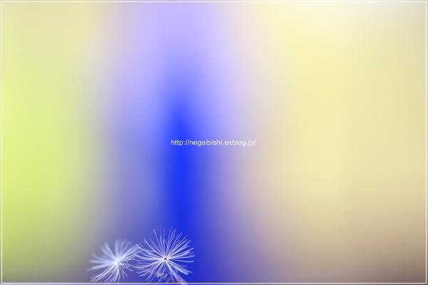 b0233456_625574.jpg
