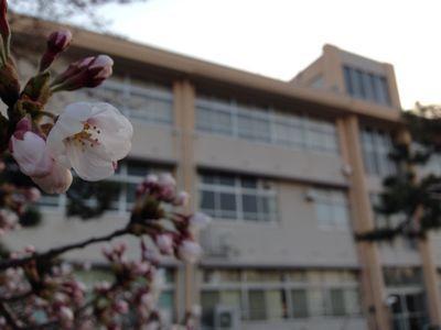 小学校入学(´▽`)_b0213187_12315978.jpg