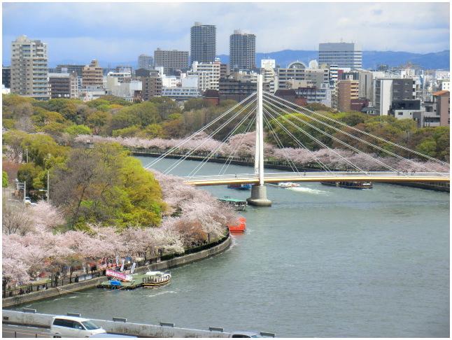 大阪天満・大川端の桜散り染め_b0104092_10185917.jpg
