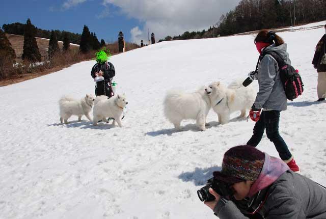 みなみちゃん地方へ春の雪遊びに_b0120492_1429371.jpg