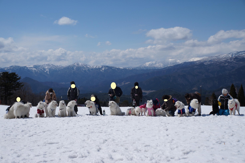 みなみちゃん地方へ春の雪遊びに_b0120492_15495733.jpg