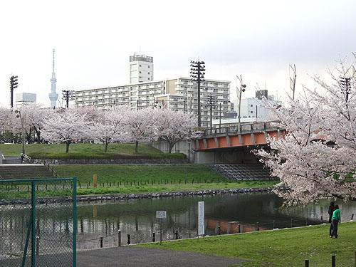 東京水路ナイトパドリング_c0137404_15264316.jpg