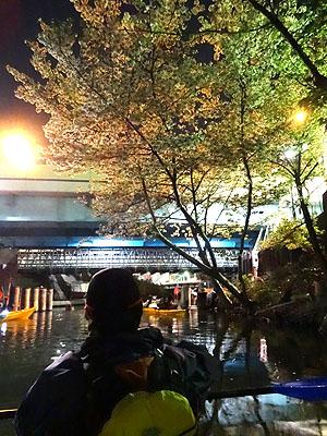 東京水路ナイトパドリング_c0137404_15283765.jpg