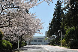 福女短・福岡国際大の桜 2014_a0042310_11145574.jpg