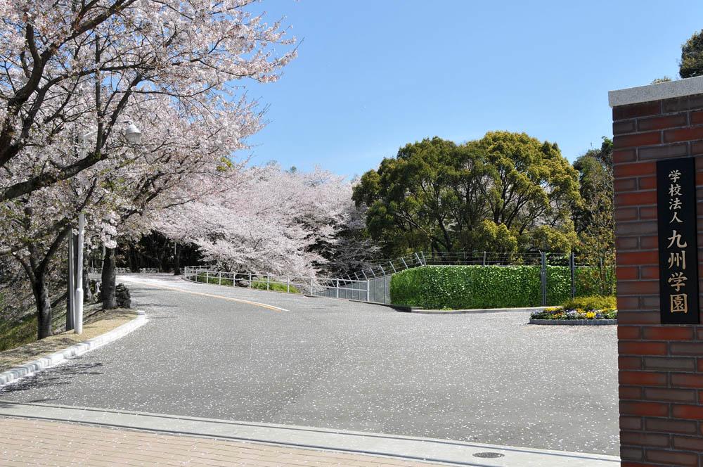 福女短・福岡国際大の桜 2014_a0042310_1138516.jpg