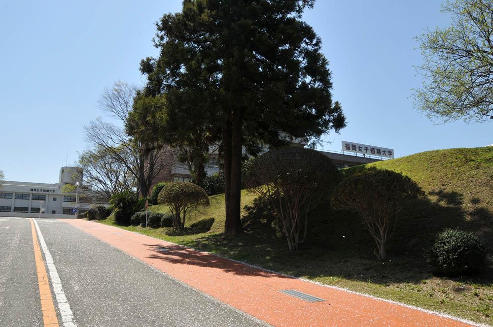 福女短・福岡国際大の桜 2014_a0042310_1144680.jpg