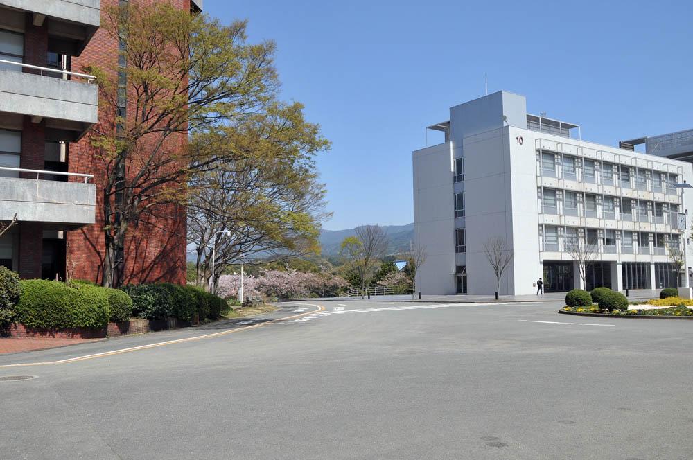 福女短・福岡国際大の桜 2014_a0042310_11503696.jpg
