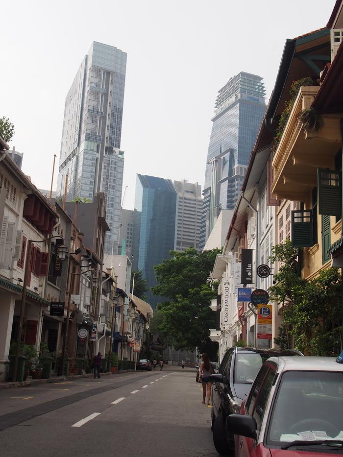 2014 3月 シンガポール (14)  Ann Siang Hill の散歩_f0062122_13442262.jpg