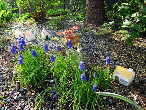 春・爛漫_f0129726_220236.jpg