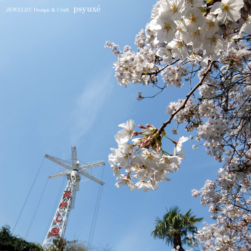 浅草花やしき_e0131432_9255319.jpg