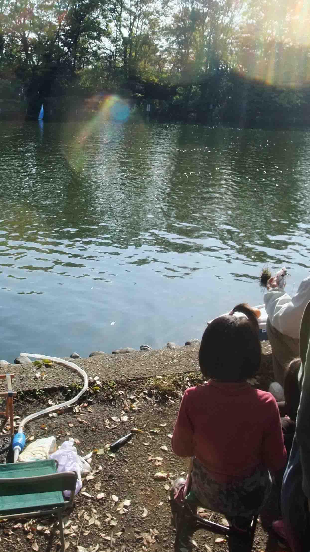 石神井公園 の いろいろ_c0307053_19325851.jpg