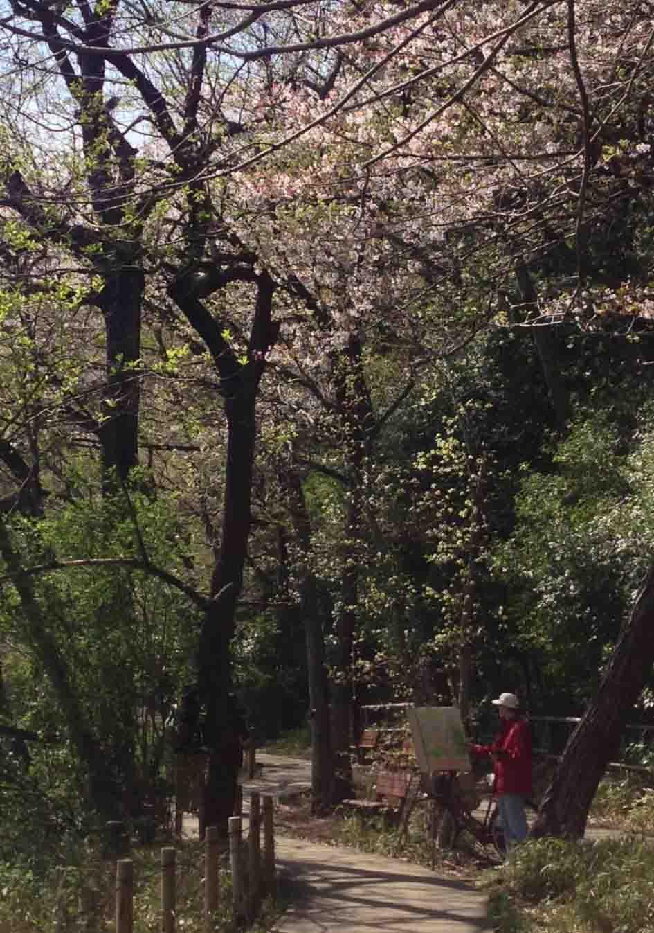 石神井公園 の いろいろ_c0307053_19351166.jpg