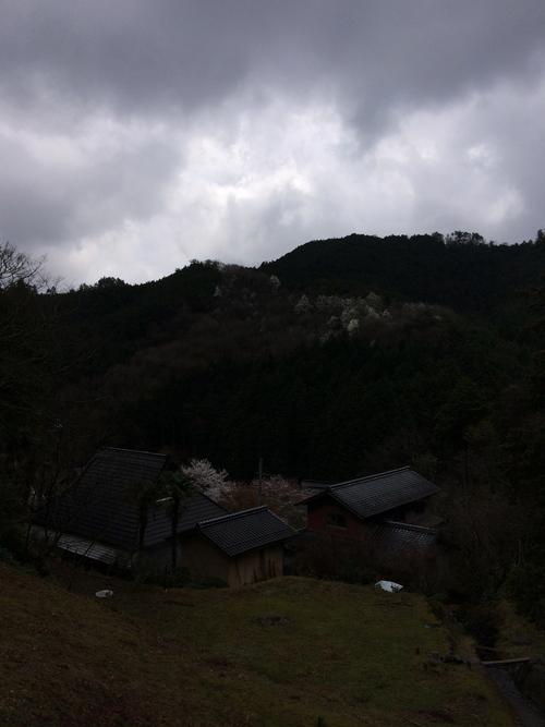 篠山と入学式と入園式_d0185565_013957.jpg