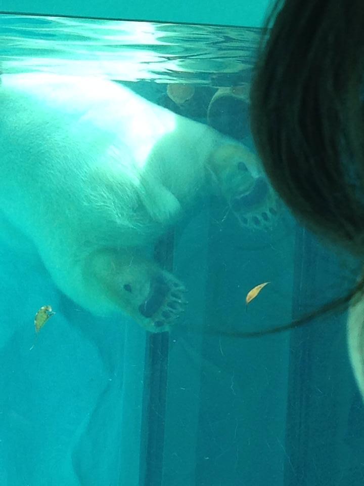 Ueno zoo_b0195783_10550506.jpg
