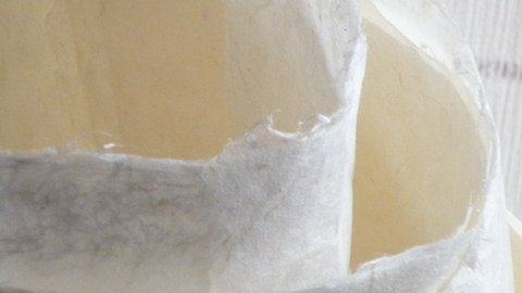 ミルク色の手漉き和紙(嬉野市~鍋野和紙)_f0146802_20152665.jpg