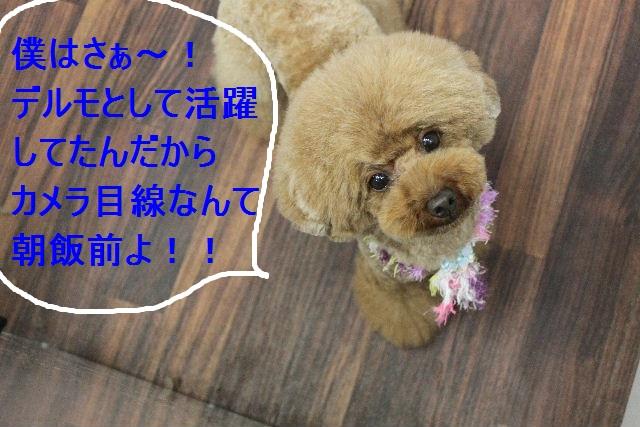 おはよ~ございます!!_b0130018_0344.jpg