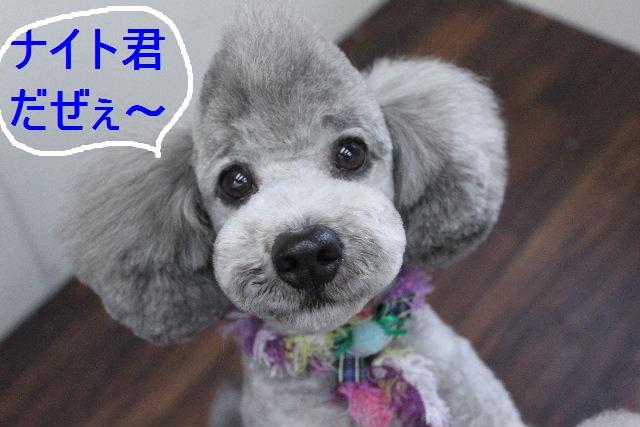 おはよ~ございます!!_b0130018_045745.jpg
