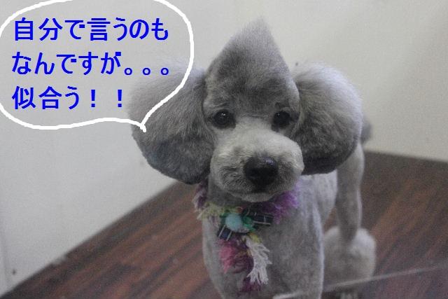 おはよ~ございます!!_b0130018_05685.jpg