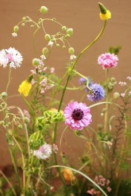 春小花もあと少し・・・_d0086634_12331938.jpg