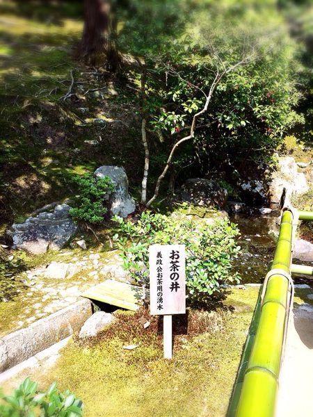 京都でお花見2014_e0292546_0341921.jpg