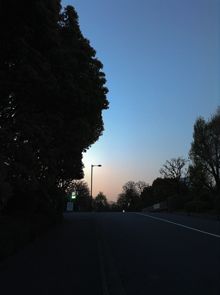 Sweet home Tokyo 91 竹橋_a0003650_2259381.jpg