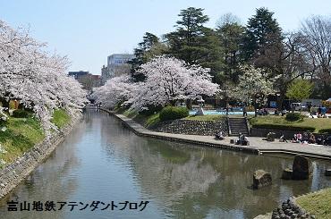 春のプレオープン_a0243562_12464383.jpg