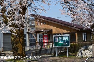 春のプレオープン_a0243562_13221649.jpg