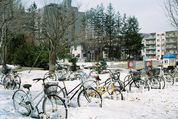 越冬した放置自転車_c0182775_18262052.jpg
