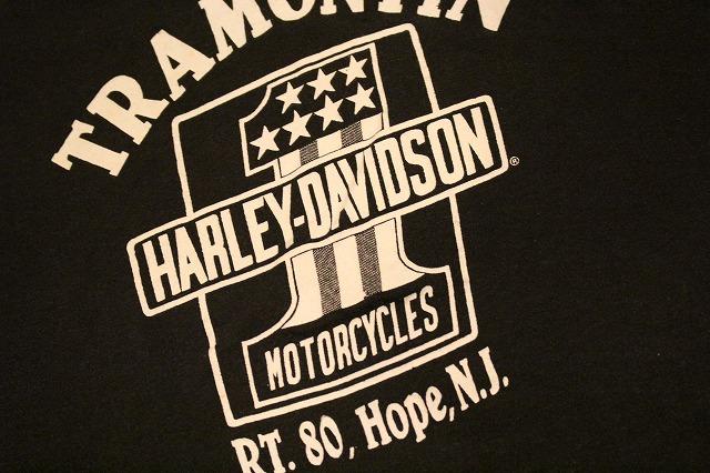 HARLEY T-SHIRT_d0121303_16142911.jpg