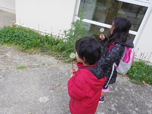 フランスの教育 その2―子供たちの学校でのたくさんのアクティビティ_e0123104_13112277.jpg