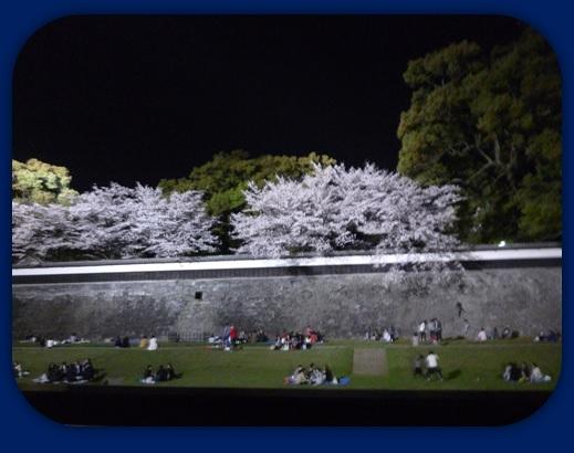 夜の長塀♪_b0228113_11363385.jpg