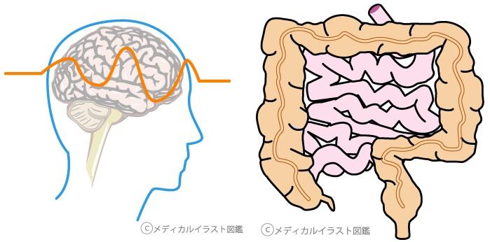 首の痛み、同じ左側でも原因が違う?〜ある日の施術より〜_e0073240_0384187.jpg