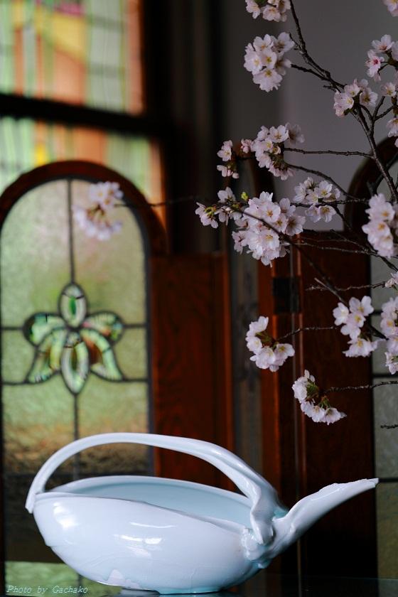 4月の迎え花_e0241944_15483646.jpg