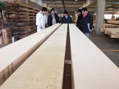 和楽備神社参集殿工事 木材選び_a0203654_2138214.jpg