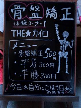 4.13蟹マル☆出店者情報  『THE☆カイロ』_a0044064_0162377.jpg