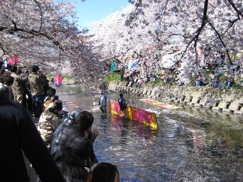 お花見日和~!!_f0230767_9353938.jpg