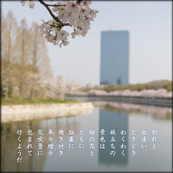 a0197968_18363941.jpg
