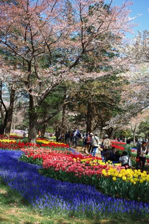 昭和記念公園の続き_a0027275_2142722.jpg