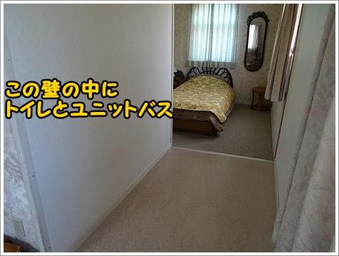 b0111376_11384479.jpg