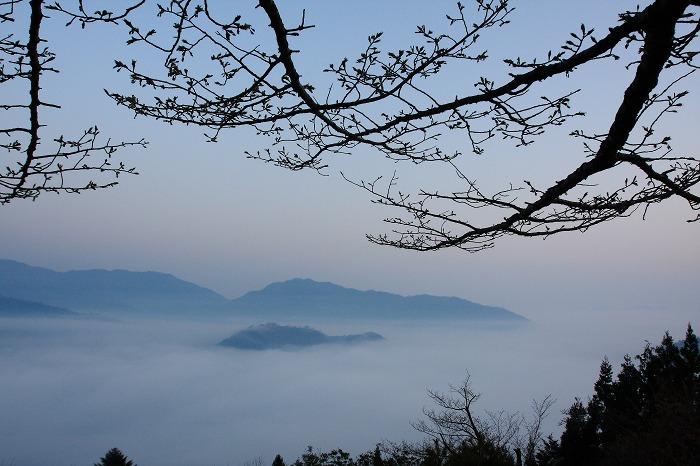 春の雲海_a0294534_10451320.jpg