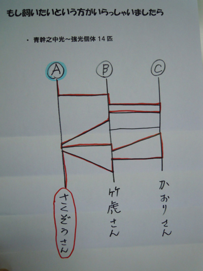 e0097534_1843162.jpg
