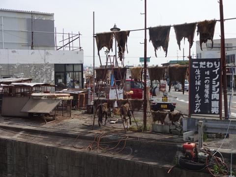 吉野へ行ってきました_e0201281_20535452.jpg