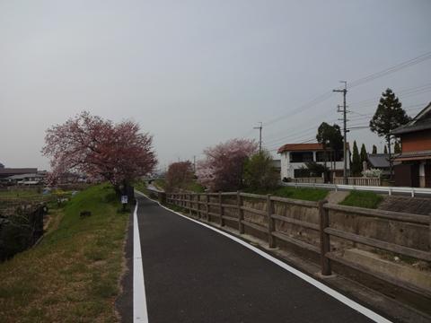 吉野へ行ってきました_e0201281_2142930.jpg