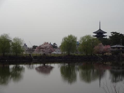 吉野へ行ってきました_e0201281_214734.jpg