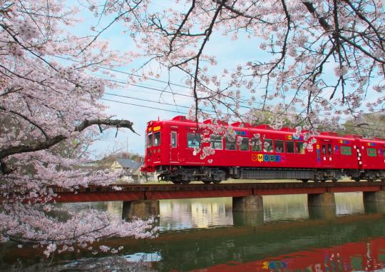 たま電車に会いに行ってきました_f0266284_00494257.jpg