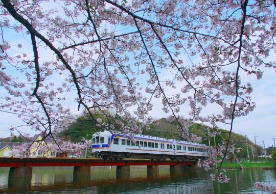 たま電車に会いに行ってきました_f0266284_00560118.jpg
