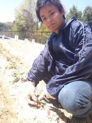 S.P.遂にサニー農園看板完成!!_a0154110_16265784.jpg