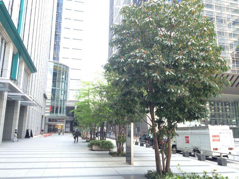 東京駅から_c0128818_18121059.jpg